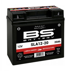 Batterie BS Battery SLA12-20