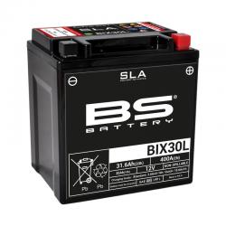 Batterie BS Battery BIX30L SLA